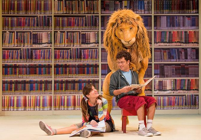 אריה הספריה, מדיטק