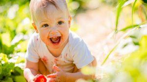 תינוק, תותים, טעימות
