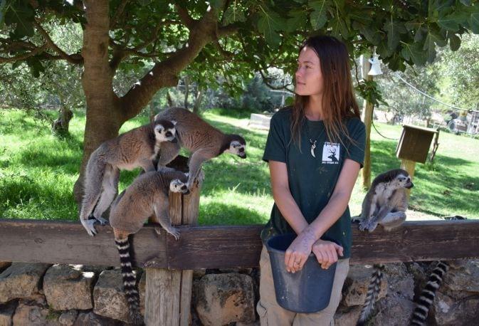"""גן החיות התנכ""""י"""